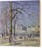 Spring In Hyde Park Wood Print