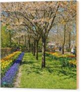 Spring In Keukenhof, Netherlands Wood Print