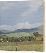 Spring In Livermore Wood Print