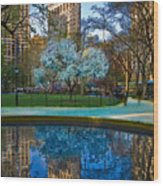 Spring In Madison Square Park Wood Print
