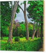Spring In Madrid Wood Print