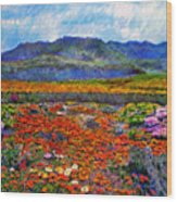 Spring In Namaqualand Wood Print