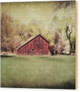 Spring In Nebraska Wood Print