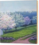 Spring In New England Wood Print