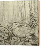 Spring In Ohio Wood Print