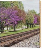 Spring In Pewee Wood Print