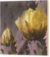 Spring In The Desert Wood Print