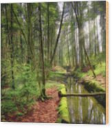 Spring In The Forest Wood Print