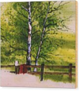 Spring In The Paddock Wood Print