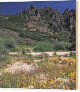 Spring In The Pinnacles Wood Print by Kathy Yates