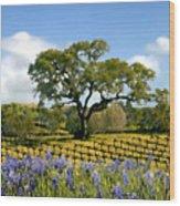 Spring In The Vineyard Wood Print