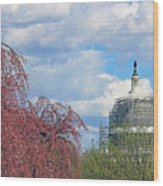 Spring In Washington And Dressed In Scaffolding Wood Print