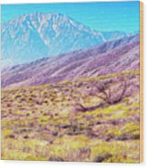 Spring In Whitewater Canyon Wood Print