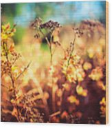 Spring Is A New Beginning Wood Print