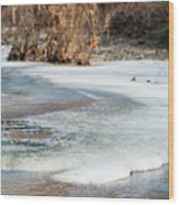 Spring Is Coming. The Ice Melts. Wood Print