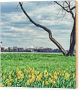 Spring Jog On The Potomac Wood Print