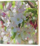 Cherry Kisses Wood Print by Louis Rivera