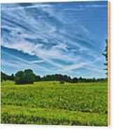 Spring Landscape In Nh Wood Print
