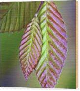 Spring Leaves Wood Print