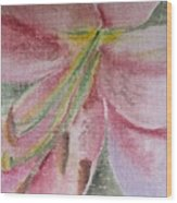 Spring Lily Wood Print