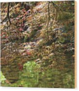 Spring Maple Leaves Over Japanese Garden Pond Wood Print