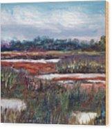 Spring Marsh Wood Print