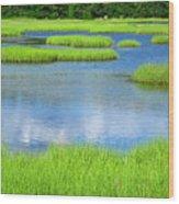 Spring Marsh Grasses Wood Print