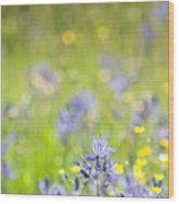 Spring Meadow 3 Wood Print