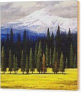 Spring Meadow Mount Brokeoff Wood Print