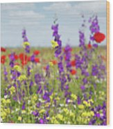 Spring Meadow With Flowers Nature Scene Wood Print