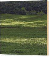 Spring Meadows Of Wildflowers Wood Print