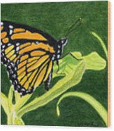 Spring Monarch Wood Print