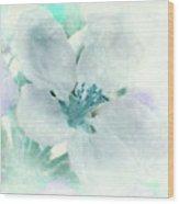 Spring Mood Wood Print
