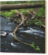 Spring Morning At Crum Elbow Creek I Wood Print
