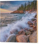 Spring Morning In Acadia National Park Wood Print