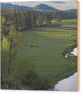 Spring Morning On Palouse River Wood Print
