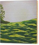Spring Morning Wood Print