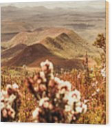 Spring Mountain Blossoms Wood Print