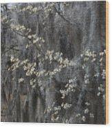 Spring Mystery Wood Print