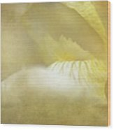 Nectar Of Spring Wood Print
