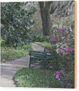 Spring Newness Wood Print