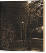Spring Night Wood Print
