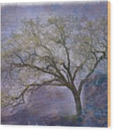 Spring Oak Wood Print
