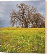 Spring Oak Tree And Wildflowers Wood Print