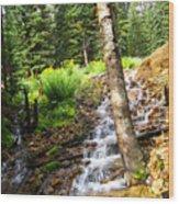 Spring Of Water Wood Print