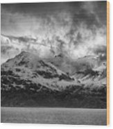 Spring On Glacier Bay Wood Print
