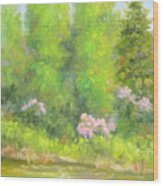Spring On Gore Creek Wood Print