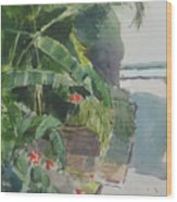 Spring Palms Wood Print