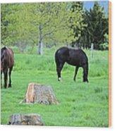 Spring Pastures Wood Print