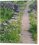 Spring Path/loving Wood Print